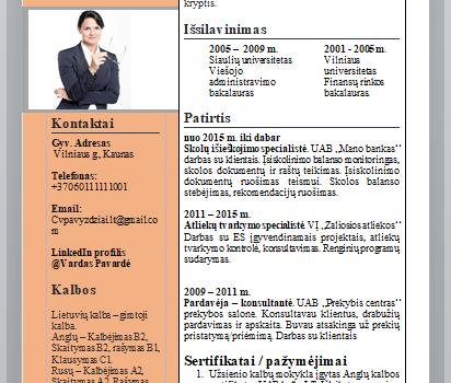 Idealus finansų analitiko CV pavyzdys