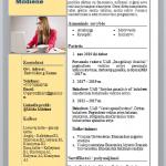 Apskaitininko CV pavyzdys