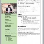 Moksleivio CV pavyzdys.