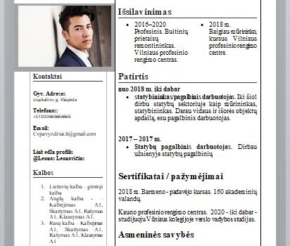 Baldų surinkėjo CV